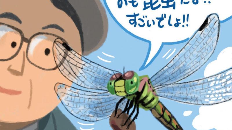 昆虫に注目!